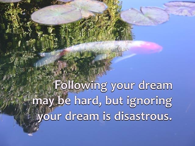 koi pond with inspirational Meta-Thought text